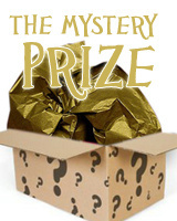 mystery-prize-figment